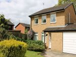Thumbnail to rent in Speedwell Way, Horsham
