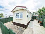 Thumbnail to rent in Attwood Close, Basingstoke