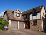 Thumbnail for sale in Hyland Gate, Billericay