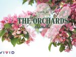 Thumbnail to rent in The Orchards, Aldershot