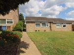 Thumbnail to rent in Welhams Way, Brantham, Manningtree