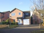 Thumbnail for sale in Mulberry Road, Bilton, Rugby, Warwickshire