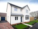 Thumbnail to rent in Crockers Close, Roundswell, Barnstaple