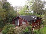 Thumbnail for sale in 36, Kingfisher Glade, Plas Dolguog, Machynlleth, Powys