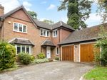 Thumbnail to rent in Aldersey Road, Guildford