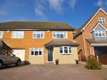Thumbnail for sale in Spingate Close, Hornchurch