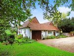 Thumbnail for sale in The Common, Dunsfold, Godalming
