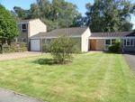 Thumbnail to rent in Verran Road, Camberley, Surrey