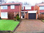 Thumbnail for sale in North Wood, Middlesbrough
