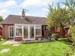 Thumbnail to rent in Salisbury Close, Odiham, Hook, Hampshire