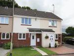 Thumbnail to rent in Godfreys Gardens, Bow, Crediton
