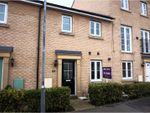 Thumbnail for sale in Kirk Way, Colchester
