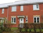 Thumbnail to rent in Heraldry Walk, Exeter