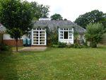 Thumbnail to rent in Boyneswood Road, Medstead, Alton