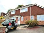 Thumbnail for sale in Maidenway Road, Paignton