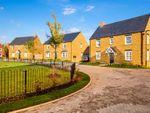 "Thumbnail to rent in ""Layton"" at Flux Drive, Deddington, Banbury"