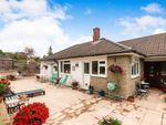 Thumbnail to rent in Sherborne St. John, Basingstoke, Hampshire