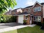 Thumbnail to rent in Oak Crescent, Havercroft, Wakefield