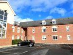 Thumbnail to rent in Poplar Court, Seldon Road, York