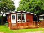 Thumbnail to rent in Hareparth Hill, Seaton, Devon