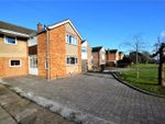 Thumbnail for sale in Billing Road East, Northampton