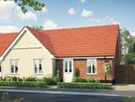 Thumbnail to rent in Fordham Road, Soham, Ely