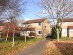 Thumbnail to rent in St James, Beaminster, Dorset