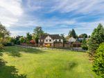 Thumbnail for sale in Lodge Farm, High Street, Roydon