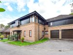 Thumbnail for sale in Baytree Close, Chichester, West Sussex