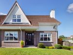 Thumbnail for sale in Ardaveen Drive, Newry