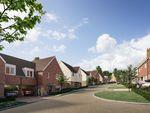 Thumbnail to rent in Claverham Way, Battle