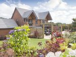 "Thumbnail to rent in ""Ula"" at Bedhampton Hill, Bedhampton, Havant"