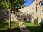 Thumbnail for sale in Rookes Crescent, Chelmsford