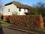 Thumbnail to rent in Ladycross Mews, Milford