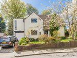 Thumbnail to rent in Castleton Grove, Jesmond, Newcastle Upon Tyne
