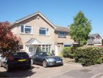 Thumbnail for sale in Proctor Way, Colchester