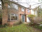 Thumbnail to rent in Digby Road, Ipswich