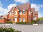 "Thumbnail to rent in ""Morpeth"" at Weddington Road, Nuneaton"
