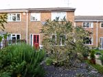 Thumbnail for sale in Claydon Path, Aylesbury