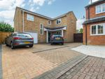 Thumbnail to rent in Livermore Green, Werrington, Peterborough