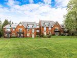 Thumbnail to rent in Crableck Lane, Sarisbury Green, Southampton