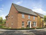 "Thumbnail to rent in ""Avondale"" at Park View, Moulton, Northampton"