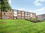 Thumbnail to rent in William Street, Derby