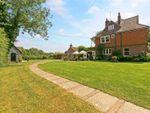 Thumbnail for sale in Cobbarn, Eridge Green, Tunbridge Wells, East Sussex