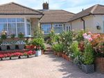 Thumbnail for sale in Cobham Close, Canterbury