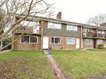 Thumbnail for sale in Bliss Close, Basingstoke
