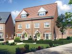 "Thumbnail to rent in ""Halstead"" at Welton Lane, Daventry"