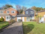 Thumbnail to rent in Rosecroft Avenue, Loftus, Saltburn-By-The-Sea