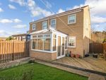 Thumbnail to rent in Maple Close, Bedlington
