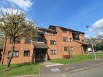 Thumbnail to rent in Tudor Close, Hatfield